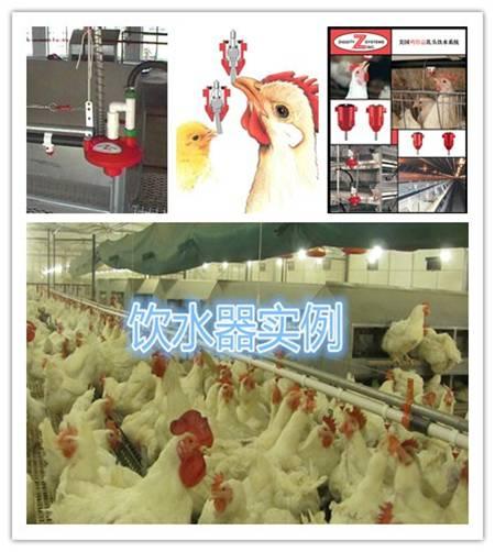 美国鸡得益乳头式饮水器